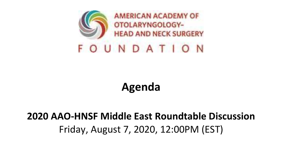 American Academy Middle East Roundtable