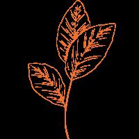 jua herbs leaves.png