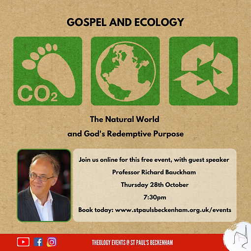GOSPEL AND ECOLOGY (Instagram Post).png