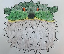 Puffer Fish by JL