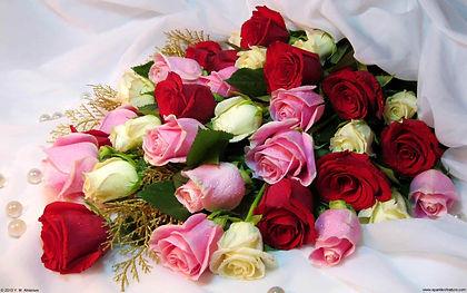 13625_rose_bouquet_w_1920x1200.jpg