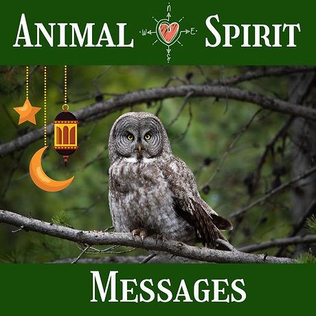 Animal Spirit Messages art.jpg