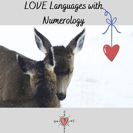 deer languages.jpg