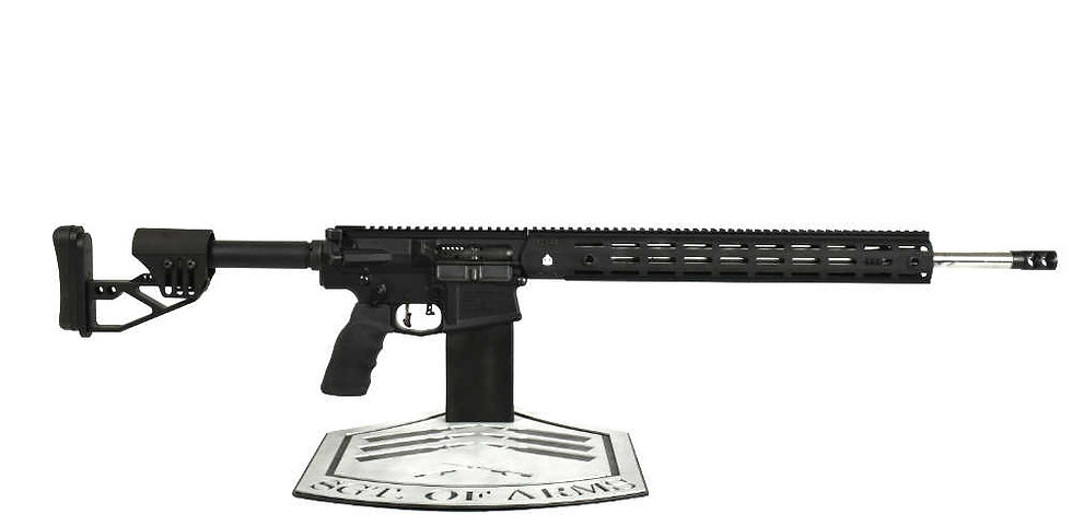 AR-10 Marksman Rifle