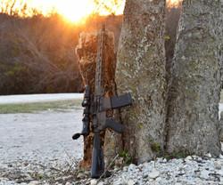 Guardian Rifle