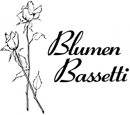 Logo_Bassetti_front.png