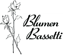 Logo_Bassetti_front_edited.png