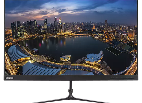 LENOVO L24i-10 23,8 Zoll Full-HD Monitor (4 ms Reaktionszeit,60 Hz)