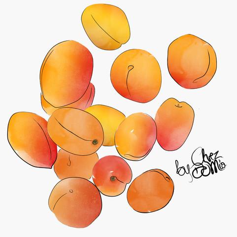 apricot_morela_seasonal_chezdomia.jpg