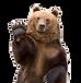 Brown-Bear-Transparent-Image-1.png