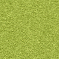 Leather Lime