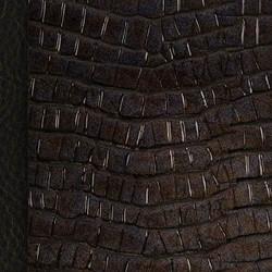 Croc Black