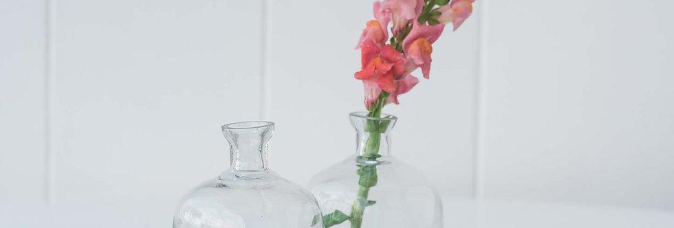 Bud Vase - Bottle