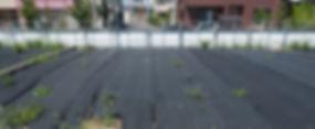 空き地2.jpg