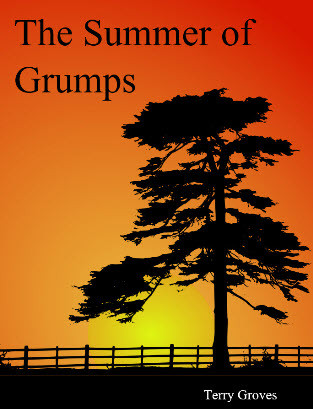Cover for The Summer of Grumps, a novel by Terry Groves