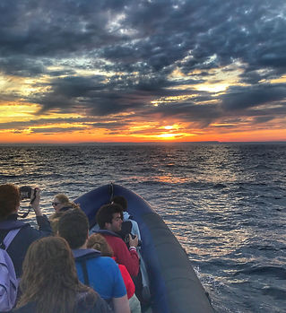 Sunset trips from a boat is somethin yo cannot miss. put this on your bucket list this year.