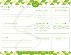 green triangles weekly planner_WM.jpg