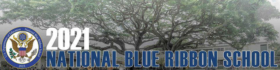 Blue Ribbon Website Banner.jpg