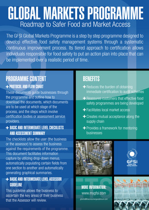 GFSI 2013 Global Markets