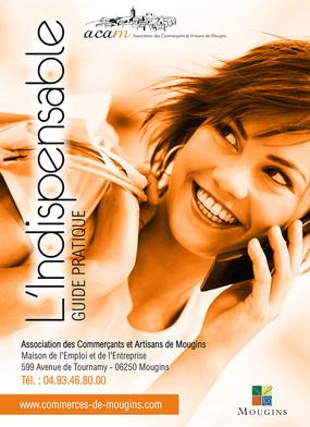 ACAM 2012 Guide