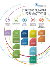 TCGF 2013 Stratégic Pillars