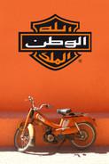 Harley Casablanca 2008