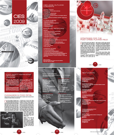CIES Annual Outlook 2009