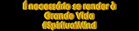 Imagem12.png