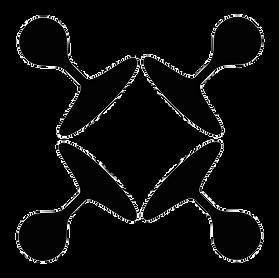 logo IMV.png