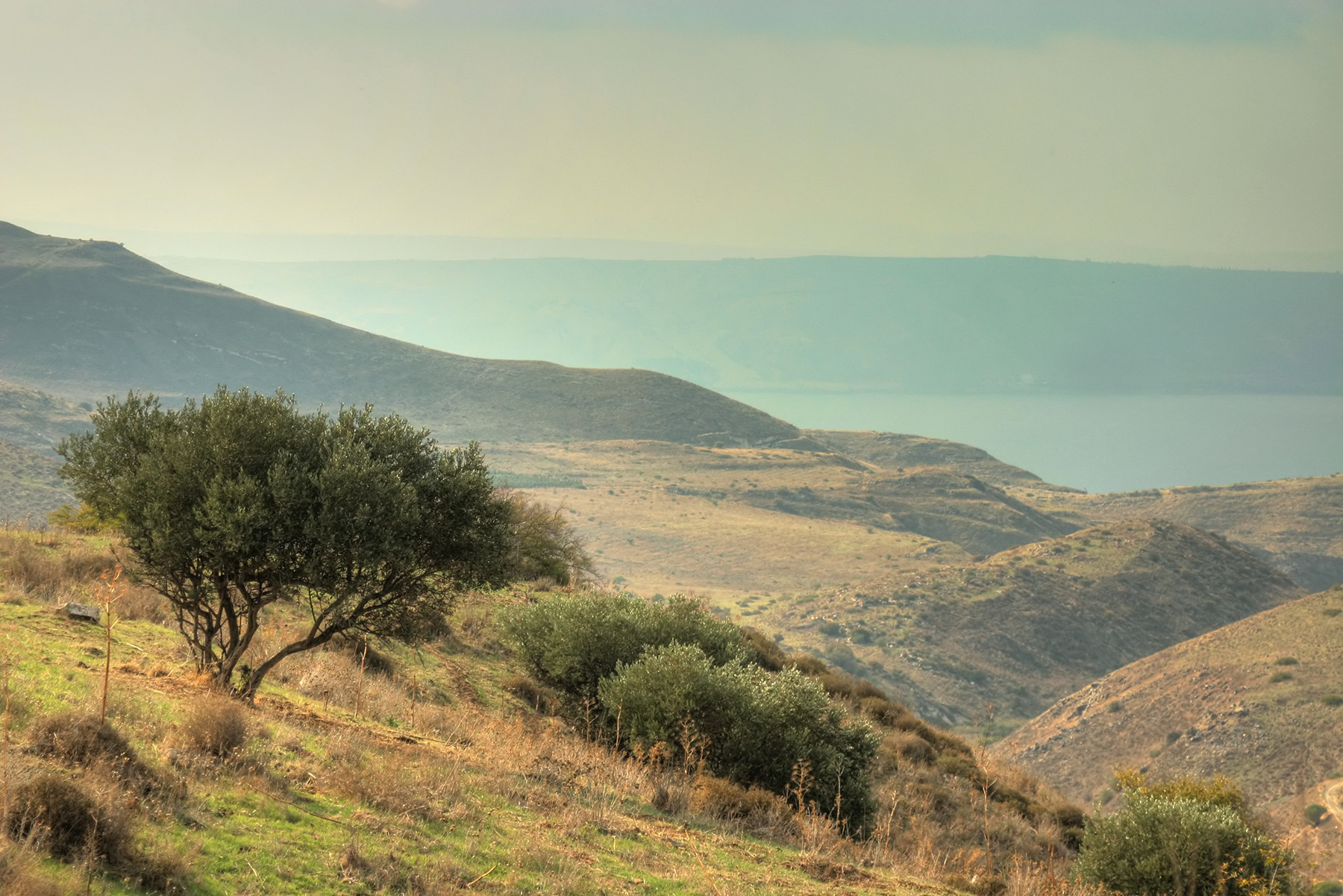 Israel - Trip Consultation