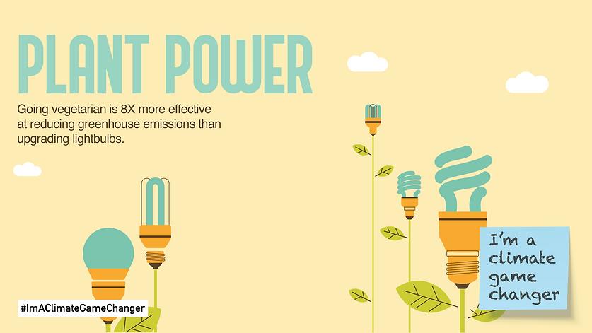 plant-power