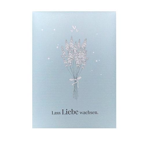 Lavendel-Saat - Lass Liebe wachsen.