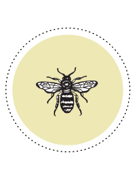Bienen Facts_Icons_Biene.png