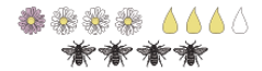 Bartblume_Nektar und Pollen.png