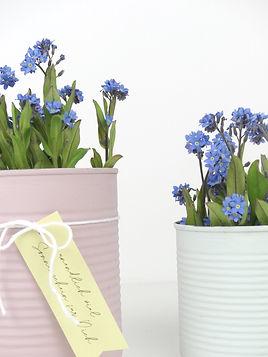 verblühmeinnicht DIY-Blumentopf.jpg