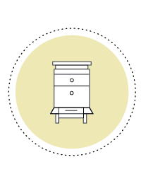 Bienen Facts_Icons_Bienenkasten.png