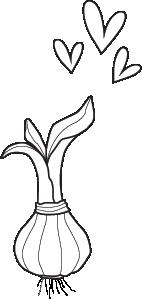 Blumenzwiebel Zeichnung verblühmeinnicht.png
