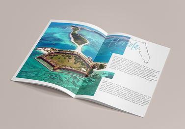 Hidden Magazine Publication