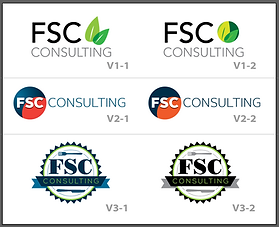 FSC Consulting Logo Ideas