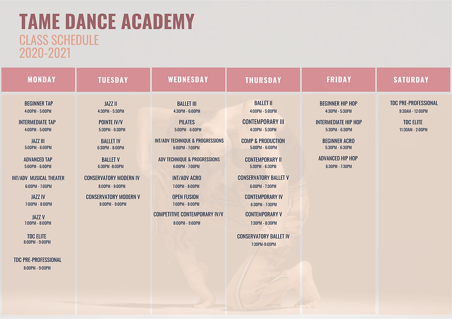 2020-2021 TAME Class Schedule.png