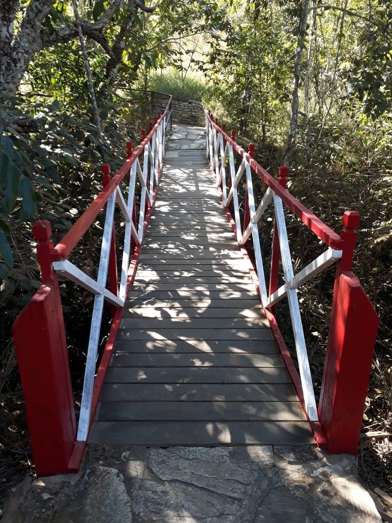 Ponte de madeira na Reserva do Abade