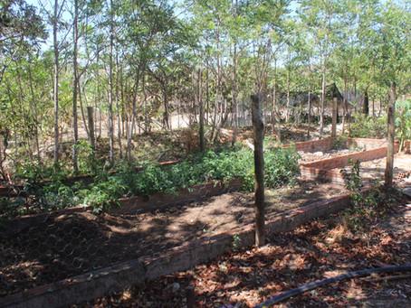 Consciência social na Cachoeira do Abade: tratamento dos resíduos sólidos