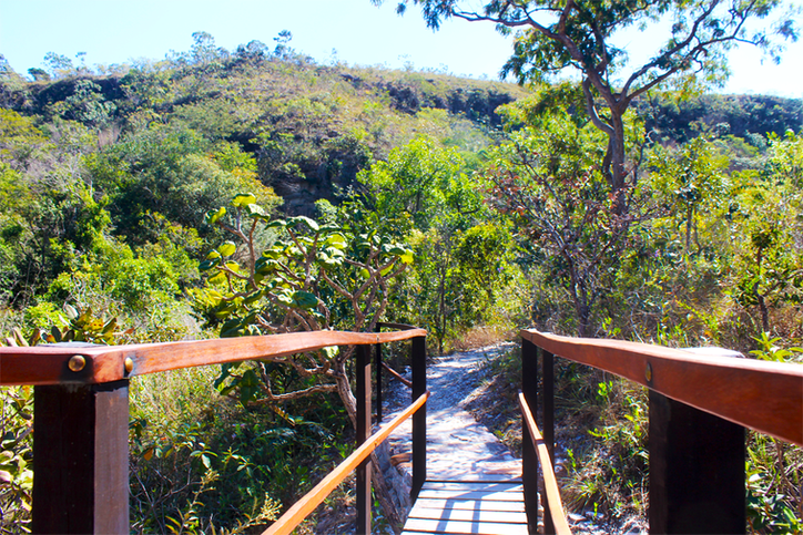 A trilha da Cacheira do Abade passa por dentro de uma natureza preservada