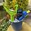Thumbnail: Water Gun Basket