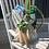 Thumbnail: Gardening Lover's Basket