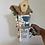 Thumbnail: Coffee First Set