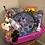 Thumbnail: Custom Kids Activity Basket