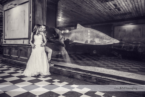 uShaka Marine World Wedding Photographer