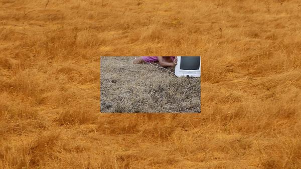 Screen Shot 2020-11-19 at 1.41.38 PM.png