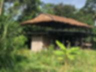 Panacea site